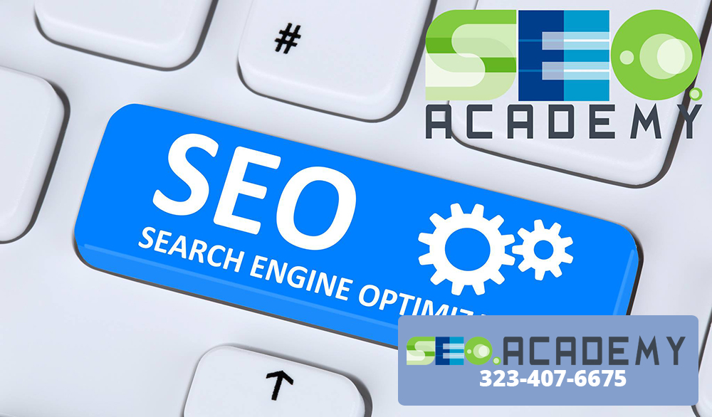 SEO Online Courses Give You the Insight You Want