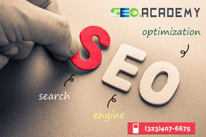 school for seo courses